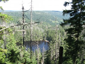 Pic of the Wildsee as seen from the hill above it