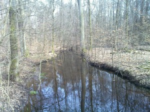 Water of the Heilbach flowing off