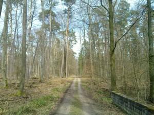 A track crossing the Heilbach