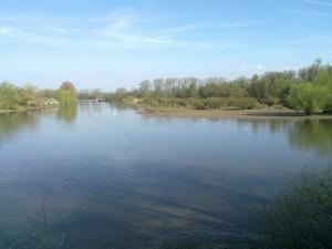 La Sauer entering the Rhine
