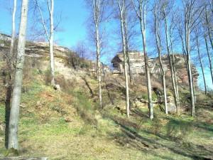 Lœwenstein Castle