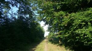 Uphill Track