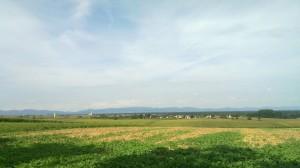 Alsacien Villages