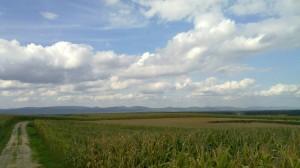 Lauter Valley