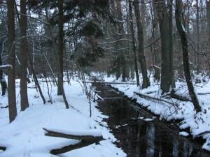 Snowy Heilbach