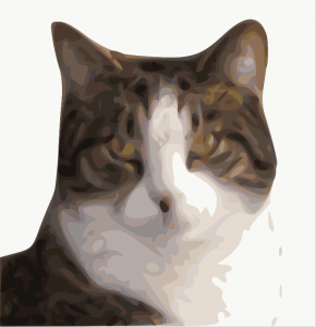 Cat Head (openclipart.org, public domain)